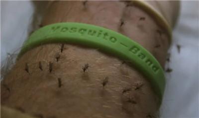 电蚊香对猫有毒!哪种驱蚊产品对宠物最安全?图2